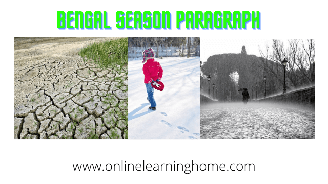 bengal season paragraph